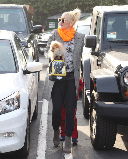 Gwen Stefani carried her Pomeranian.