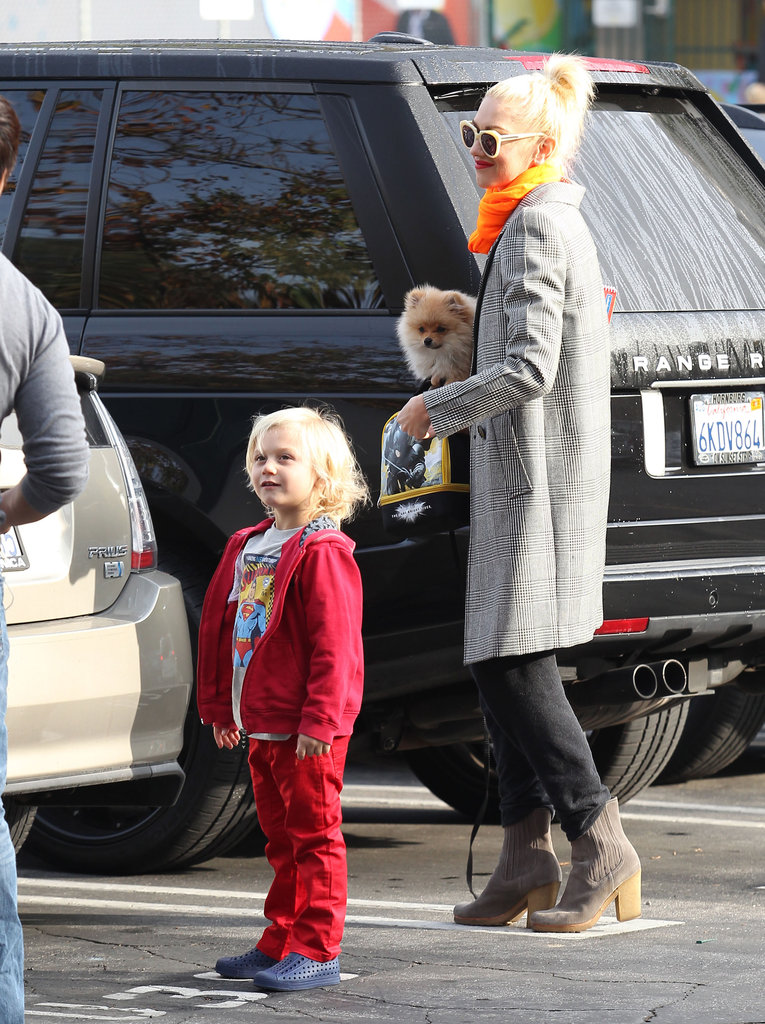 Gwen Stefani carried her dog while dropping son Zuma off.