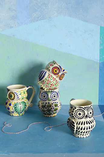 All of that freshly roasted coffee will look great in these folksy hand-painted owl mugs ($14).