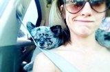 Enjoying a Drive