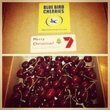 Cherries! Channel 7 gifted PopSugar editor Jess with a delish box of goodness at the end of their Christmas party.
