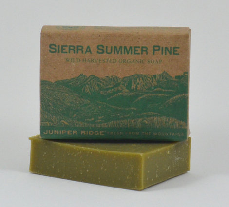 This pine-scented bar soap ($10) has a fresh, woodsy smell he'll love.