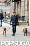 Jessica Biel bundled up in a coat and gloves for a walk around the Big Apple with her dogs.