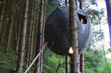 A Weekend in a Tree Tent