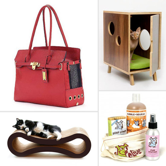 The Absolute Best Pet Products of 2012
