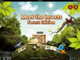 Meet the Insects: Forest Edition