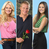 Share Your Snap Judgments on Bachelor Sean's New Girls
