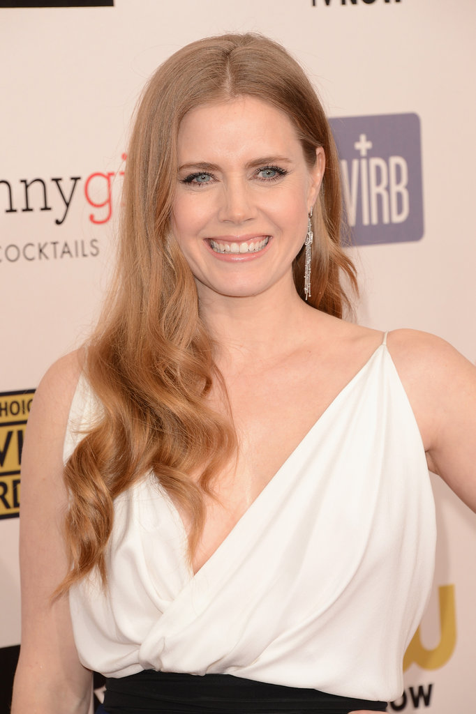 Amy Adams Celebrates Oscar Nod on Critics' Red Carpet