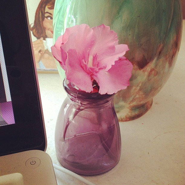 This cute flower (picked by her boyfriend!) made Gen's working weekend much sweeter.