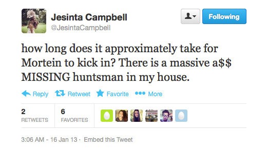 Jesinta Campbell took to Twitter in the case of a spider emergency.