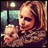 Poppy Delevingne cuddled with a piglet. Source: Instagram user poppydelevingne