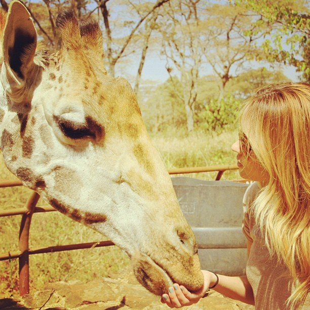 And she made a friend while on vacation. Source: Instagram user laurenconrad