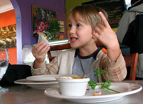 What to Do If Your Toddler Is a Picky Eater