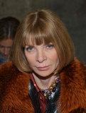 Anna Wintour showed off her extensive fur collection in a pumpkin-hued jacket at Altuzarra.