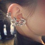 Ear jewelry.