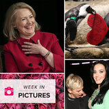 Hillary Gets the Giggles, Penguins Celebrate Valentine's Day, and Katy's Cleavage Makes a Statement