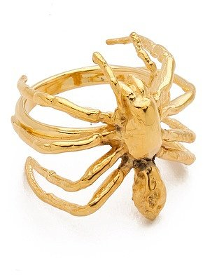 Tom binns Spider Ring