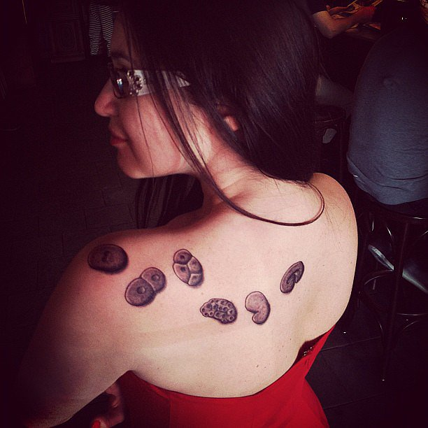This tattoo celebrated the successful completion of a Ph.D. — perhaps in gastrulation? Source: Instagram user badomens
