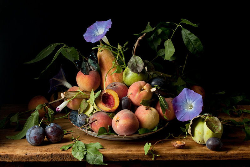 Peaches and Morning Glories