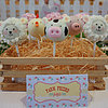 Farm Animal Barnyard Kid&#039;s Birthday Party