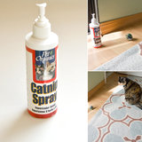 Pet Organics Catnip Spray