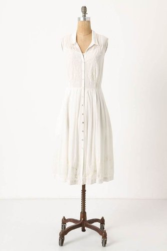Spiraea Shirtdress, Petite