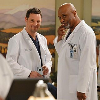 "Grey's Anatomy Recap ""Idle Hands"""