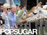 Ellen DeGeneres and Portia de Rossi met a giraffe at the Taronga Zoo.