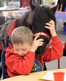 Service Animal Helps Child