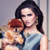 Adorable Pomeranian Stars in Spring 2013 Campaign For Tous