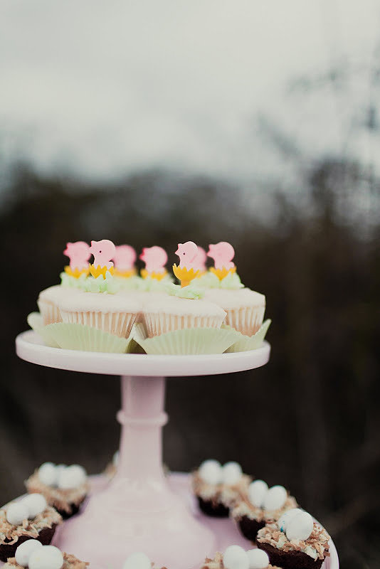 Cute cupcake toppers and a coordinating color palette gave the spread a festive, cohesive look. Source: Kaylee Eylander Photography via Jenny Cookies