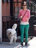 Olivia Wilde walked her dog, Paco, in NYC.
