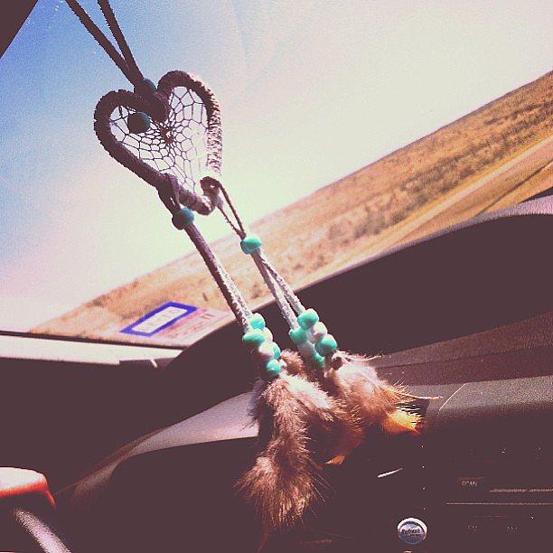 Take a Road Trip