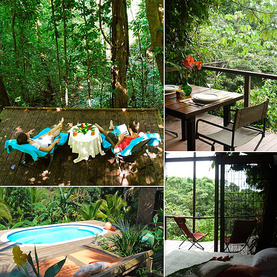 The jungle tree house in Puntarenas, Costa Rica boasts a sleek, tropical design and indulgent amenities. With a pool, a covered porch, a king-size bed, and WiFi, it's the perfect spot for design-savvy travelers hoping for a glimpse of jungle wildlife.