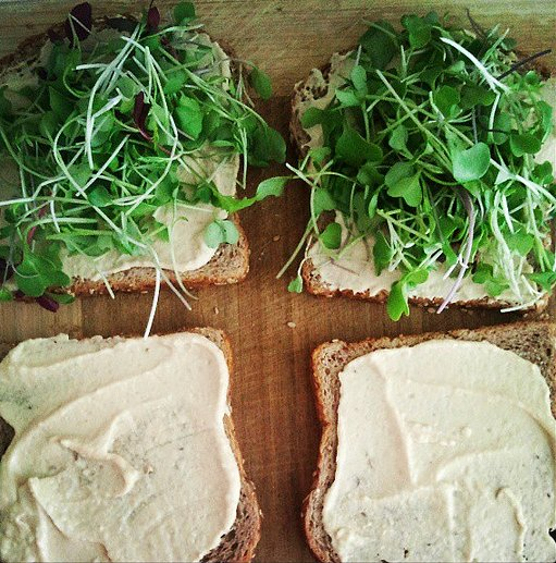 Hummus and Microgreen Toast