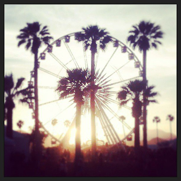 Is there a more quintessential Coachella image out there?