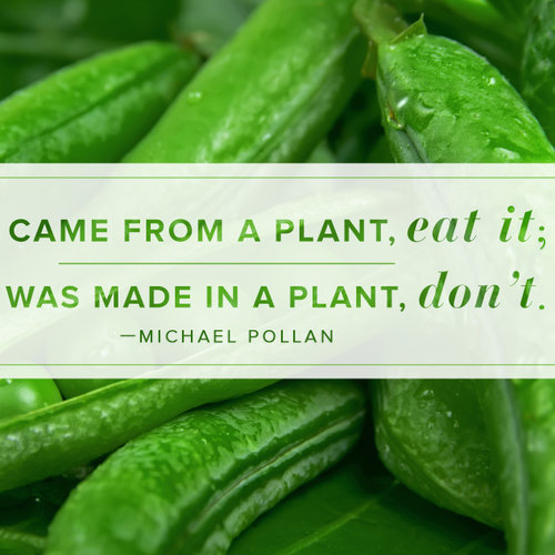Michael Pollan Quote About Eating