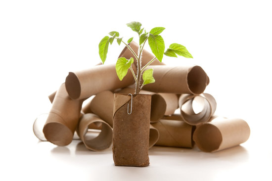 7 Creative Ways to Reuse Toilet Paper Rolls