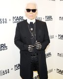 """There is no marriage, yet, for human beings and animals. I never thought that I would fall in love like this with a cat.""  — Karl Lagerfeld on his cat, Choupette, in an interview with CNN's Alina Cho. Source: Billy Farrell/BFAnyc.com"