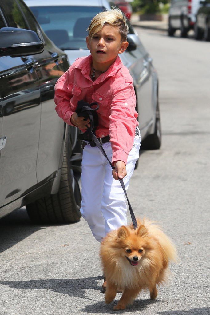 Kingston Rossdale walked a dog.