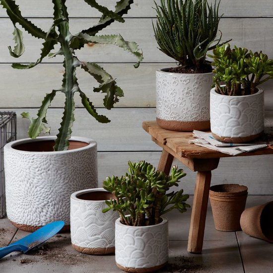 Give seasonal plants a home with a crisp patterned pot ($19).