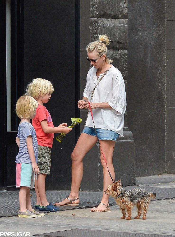 Naomi Watts took her sons, Sasha and Kai Schreiber, to walk the dog in NYC.