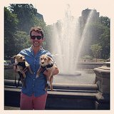 Brad Goreski posed with his two adorable puppies during a warm NYC day in Washington Square Park — we love his Summer colorblocking! Source: Instagram user mrbradgoreski