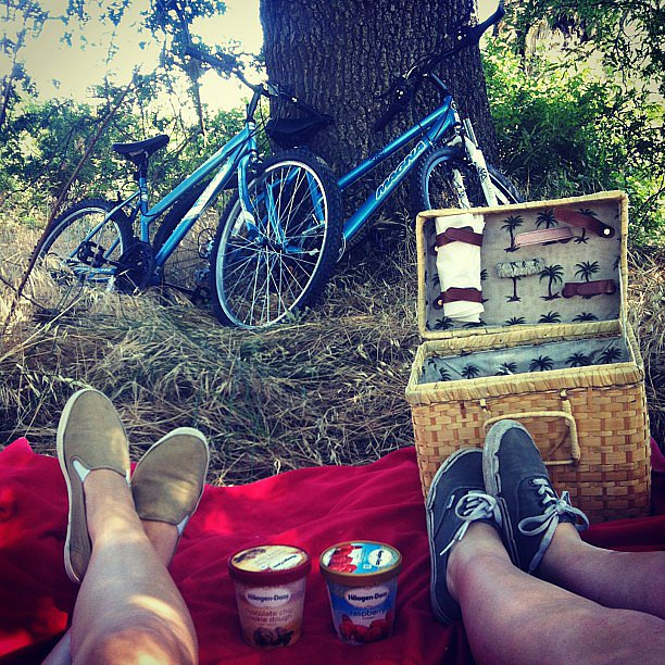 Go on a Red, White, and Blue Picnic