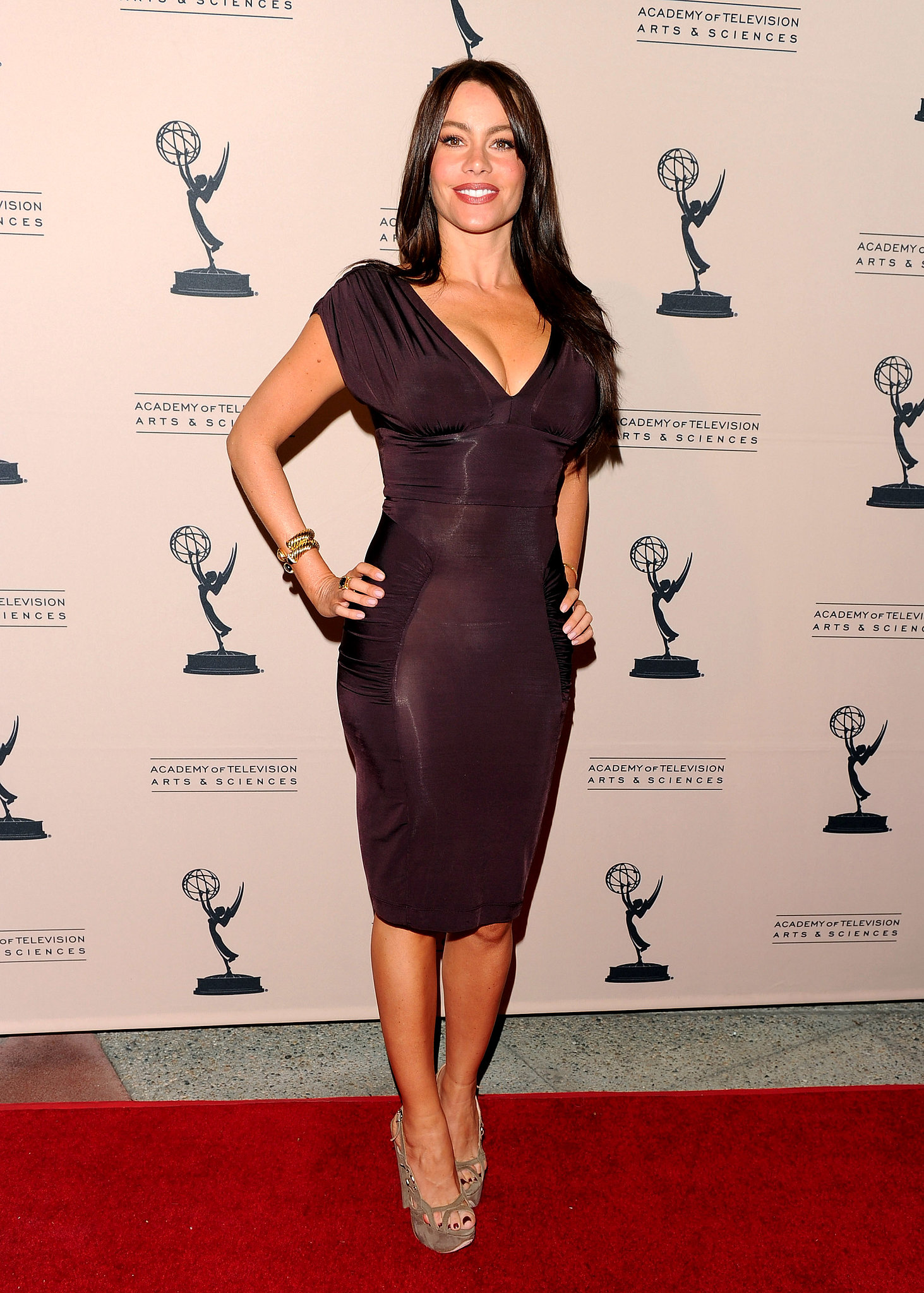 Sofia looked picture perfect in a fitted plum dress and swirly suede peep-toes in March 2010.
