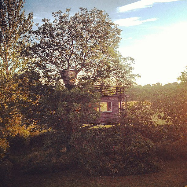Presenting the most dreamy tree house we've ever laid eyes on!  Source: Instagram user amandacbrooks