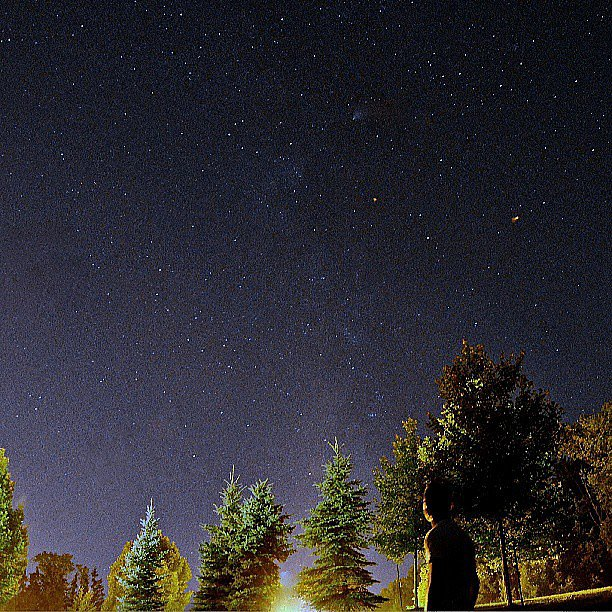 Stargaze in Your Backyard