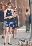 Karlie Kloss is on model duty, even when she's taking the dog for a walk, in a Reformation dress and ballet flats.