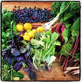 This farmers market bounty from actress Ellen Pompeo screams Summer.  Source: Instagram user ellenpompeo