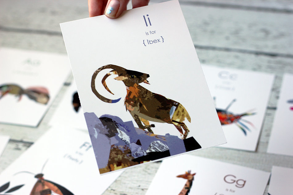 Animal Collage Flash Cards